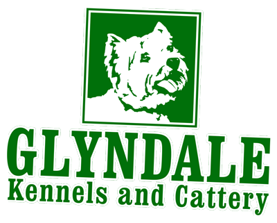 Glyndale Kennels and Cattery, Workington
