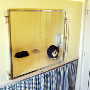 Modern uPVC cat chalet at Glyndale Kennels and Cattery